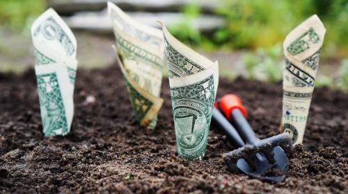 Paid vs. Organique : un débat dépassé