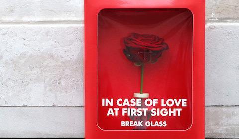 Campaña San Valentín: En caso de Amor a Primera Vista